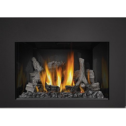 Napoleon IR3-1SB 24000 BTU Insert Direct Vent Natu (Fireplace Direct Vent Gas Inserts)
