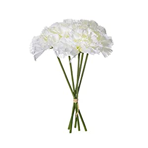 WDDH Artificial Silk Flower Carnation,12 Bouquet 60 Stems Bridal Wedding Bouquet for Home Table Wedding Office Decoration,Beautiful Flowers for Valentine´s Day,Mother's Day 70