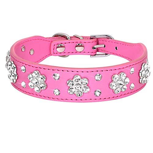 Didog – Cute PU Leather Dog Collar – Rhinestone Flower Pattern Studded – 1 Inch Width Fit Small and Medium Dogs