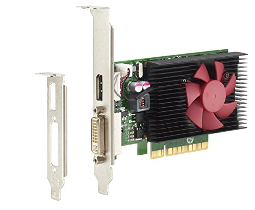 HP GeForce GT 730 Graphic Card - 2 GPUs - 900 MHz Core - 2 GB GDDR5 - Low-Profile (Certified Refurbished) (Nvidia Geforce Gt730 2gb Pcie X8 Dp Gfx)