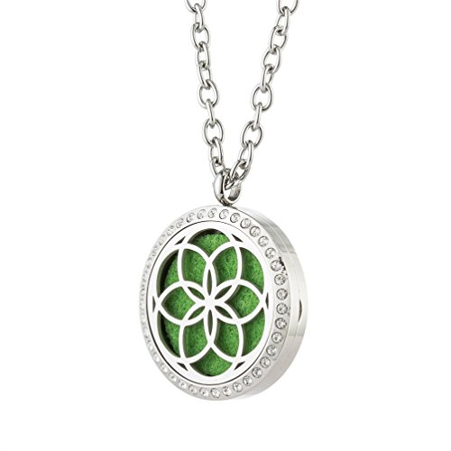 Image Locket (JOYMIAO Essential Oil Diffuser Stainless Steel Necklace with Magnetic Locket Pendant Jewelry 8 Pads)