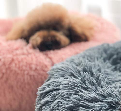 Lamzoom Cama para Mascotas Deluxe para Gatos y Perros pequeños y medianos con cojín Suave Redondo u Ovalado para Nido de Donut, Cama para Mascotas y Gatos ...