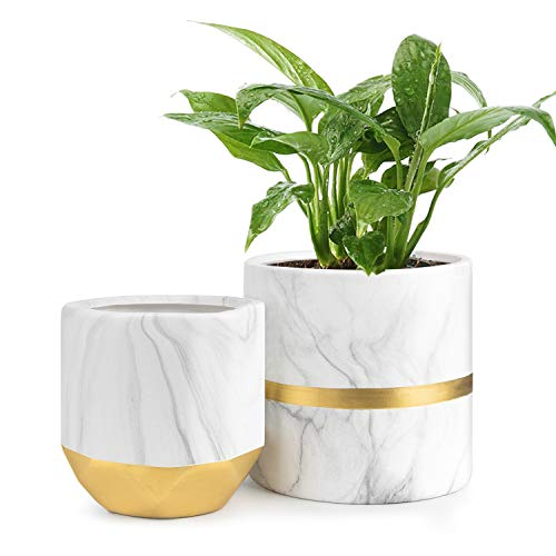 - HOMENOTE White Ceramic Flower Pot Garden Planters 6