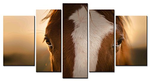- EZON-CH Modern Art Animal Series 5 piece Paintings a Reddish Brown Horse with White Face Has Gentle Eyes Picture Home Decor Wall Art For Home Stretched and Framed