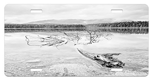 zaeshe3536658 Driftwood License Plate, Branch of Fallen Tree in the Lake of the Mountain Foggy Forest Digital Print, High Gloss Aluminum Novelty Plate, 6 X 12 Inches, Pale Grey by zaeshe3536658