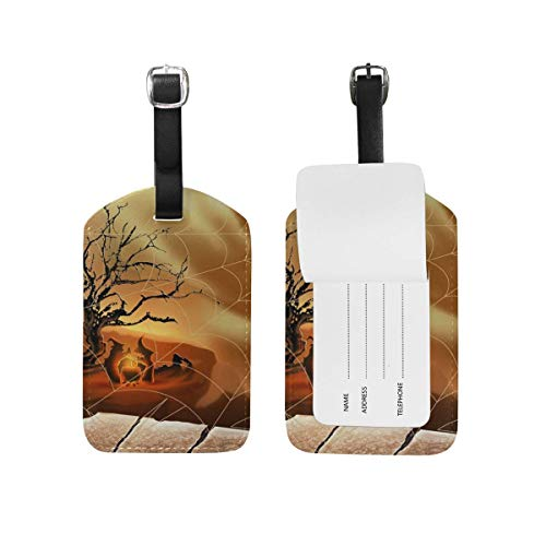 SDGlicenseplateframeIUY Halloween Spirit Spider Web Pattern Luggage Tags