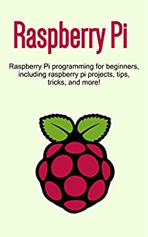 raspberry pi projects for beginners pdf