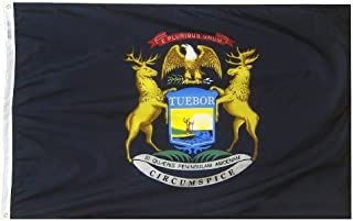 product image for All Star Flags 4x6' Michigan Nylon State Flag - All Weather, Durable, Outdoor Nylon Flag