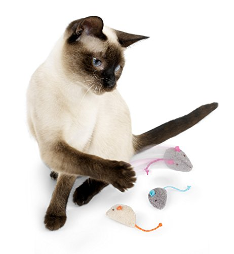 SmartyKat Value Pack Cat Toys 5