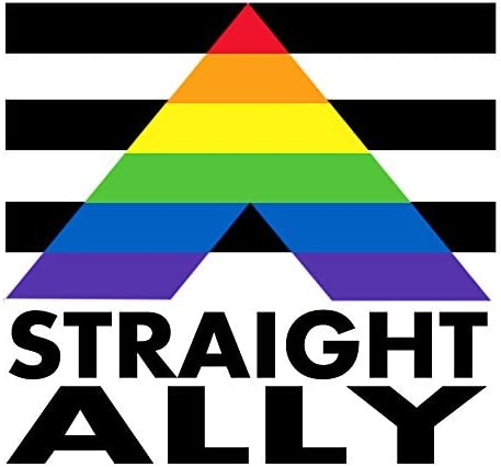 Straight Pride Vinyl Decal Sticker Car Truck Window