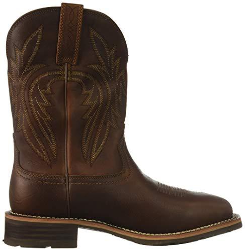 uomo Rancher ibrido Ariat Cowboy Western H2o sole Scarpe 400g da HxWXTP