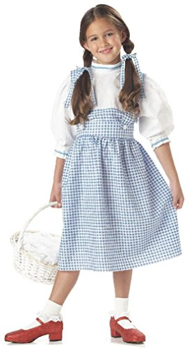 [Fancy Dorothy Wizard of Oz Child Costume] (Wizard Of Oz Witch Socks)