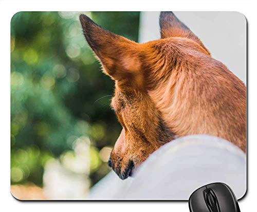 Gaming Mouse Pads,Mouse mat,Dog Paw Animal Pet Puppy Cute Canine Dog Paw 5