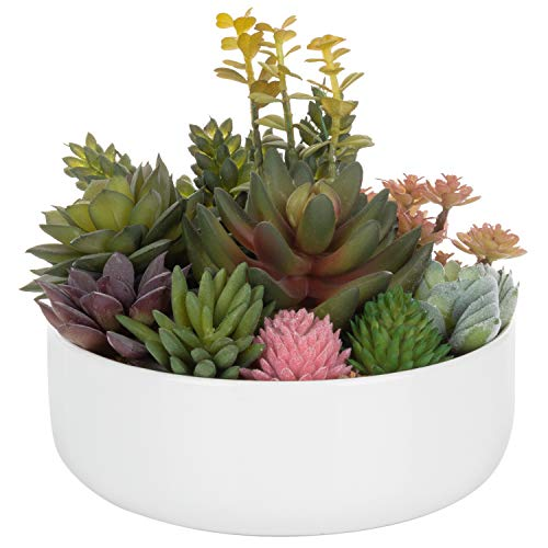 - MyGift 8-inch Assorted Artificial Succulent Arrangement in White Ceramic Pot