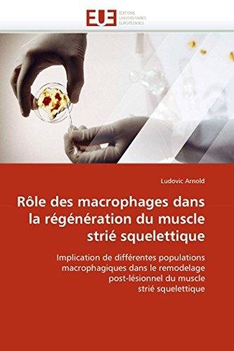 (Rôle des macrophages dans la régénération du muscle strié squelettique: Implication de différentes populations macrophagiques dans le remodelage ... (Omn.Univ.Europ.) (French Edition))