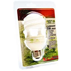Tropical Series Coil Bulb