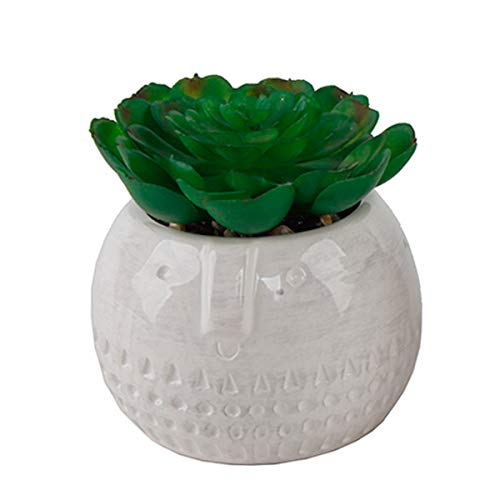 Flora-Bunda-Mid-Century-Artificial-Plants-Cactus-Set-of-2-Artificial-Succulent-in-Round-Cool-Face-Ceramic-Planter-White-Pot-4