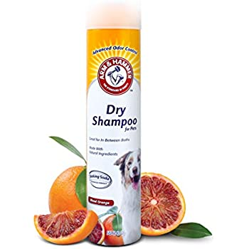 Arm & Hammer Dry Shampoo for Dogs | Dry Dog Shampoo Aerosol Spray Cleans & Deodorizes, Blood Orange Scent