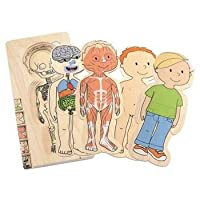 Chico de rompecabezas de madera de 5 capas Hape Your Body