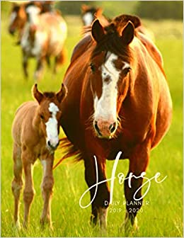 Planner July 2019- June 2020 Horse Equine Foal Monthly ...