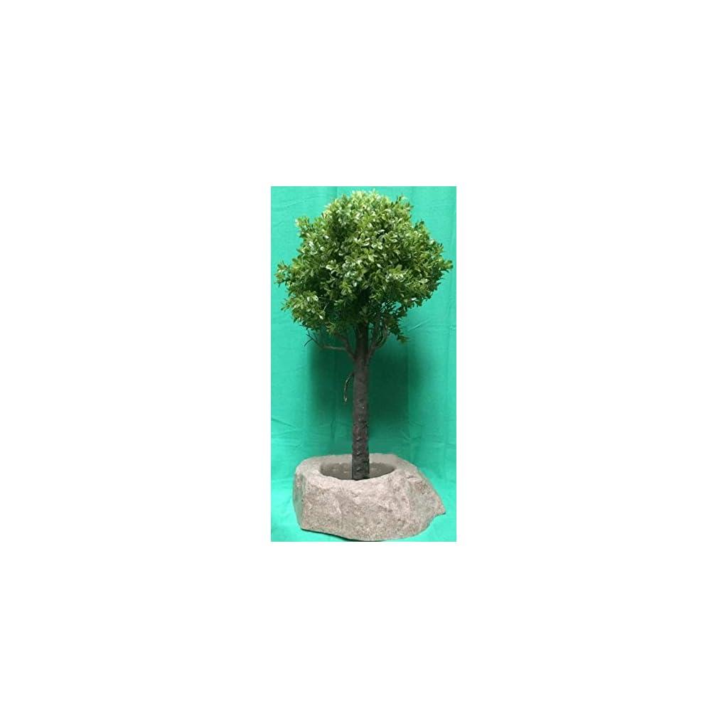 outdoor artificial topiary