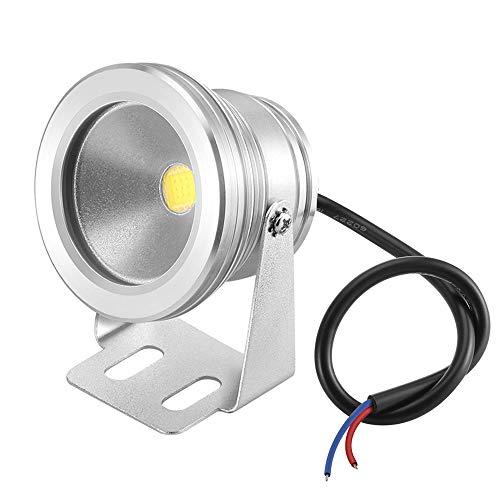- Lemonbest 12v Water resistant LED Underwater Light Flood Lamp for Decorating Landscape Fountain Pond Pool Lighting Lamp 10w Cool White