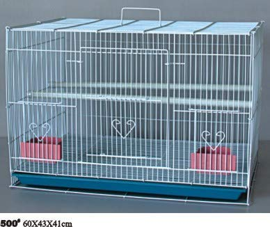 """Aakriti Bird Cage Best for Lovebird/Pet, Parrot, Parakeet, Budgie, Cockatiel Cage Hammock Large Bird Cage (Size: 23.5"""" Long, 16.5"""" Wide and 16"""" Height) Color May Vary"""