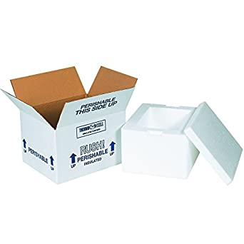 d529d682ad28 Amazon.com: BOX USA B227C Insulated Shipping Kits, 12