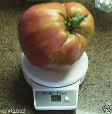 25 Seeds Hungarian Heart Tomato Seed , A.k.a, Oxheart Tomatoe,open Pollinated !Huge Tomato!