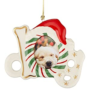 Lenox Dog Frame Ornament/Magnet