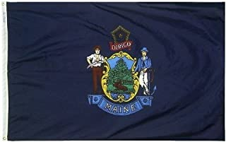 product image for All Star Flags 4x6' Maine Nylon State Flag - All Weather, Durable, Outdoor Nylon Flag