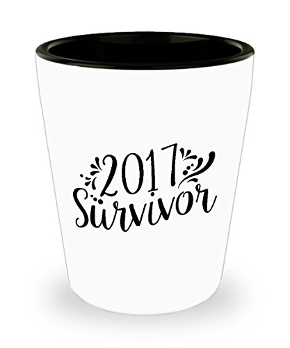 Shot Glass 2017 Survivor Funny Happy New Years Eve Gift Glass -