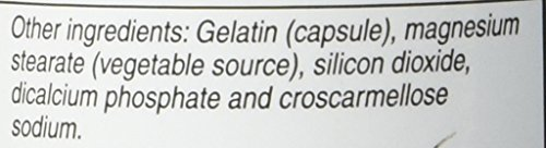 Vitacost Alpha Lipoic Acid & Acetyl L Carnitine HCl 1,600 mg per serving 60 Capsules
