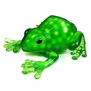 Squishy Toys Sound : Amazon.com: Squeezy Frog Squidgy Sensory Toy - Fiddle Fidget Stress Sensory Autism ADHD: Toys ...