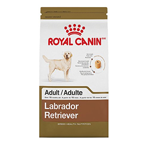 ROYAL CANIN BREED HEALTH NUTRITION Labrador Retriever Adult dry dog food, 5.5-Pound