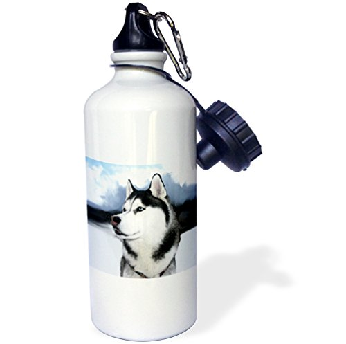 3dRose wb_4438_1 Siberian Husky Sports Water Bottle, 21 oz, White (Husky Water Bottle Siberian)