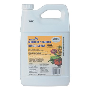 Monterery Garden Insect Spray Spinosad 1 Gallon