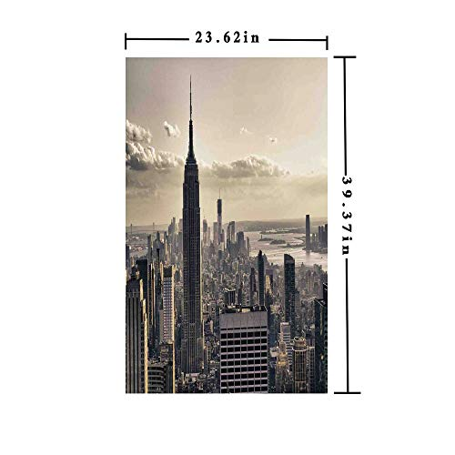 3D No Glue Static Decorative Privacy Window Films,Aerial View of NYC in Winter Time American Architecture Historical Popular Metropolis Photo,W15.7xL63in,For Living Room Bathroom Kitchen Front Door w