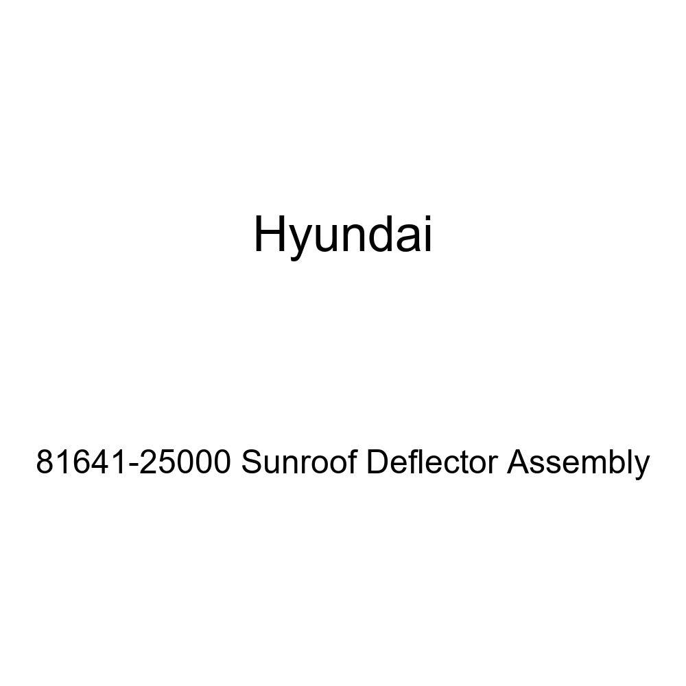 Genuine Hyundai 81641-25000 Sunroof Deflector Assembly