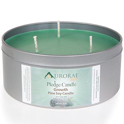 Northwoods Pinecone (Aurorae 26 oz Pine Scented Soy Aromatherapy Candle)