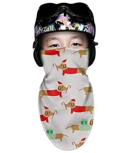 Scsdw Wdrt Ski mask for Kids Christmas Darlings Dachshunds Full Face Cover Winter Windproof Balaclava ski mask