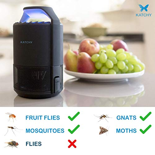 Buy indoor flying insect trap