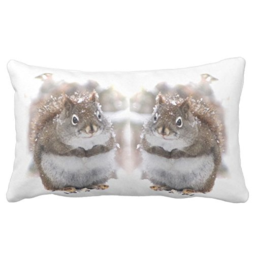 UOOPOO Sweet Red Squirrels Animal Outdoor Throw Pillow Case Square 16 x 24 Inches Soft Cotton Canvas Home Decorative Wedding Cushion Cover for Sofa and Bed One Side