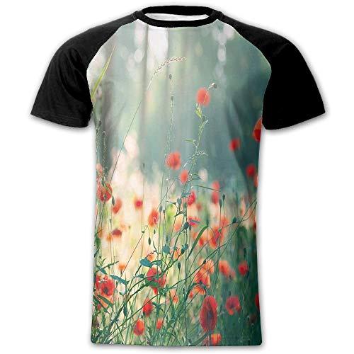 Wild Red Poppy Flowers Field Summertime Sunbeams Gardening Bedding Plants Decorative Men's Short Sleeve Raglan - Raglan Field