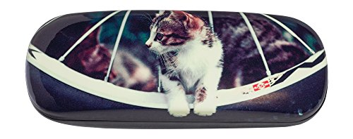 Hard Eyeglass Case Adorned With Adorable Photo Curious Kitten Between Bike Spokes (Kitten Glasses)