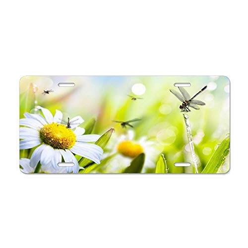 Blingreddiamond Daisy Dragonfly Duet Personalized Novelty Front License Plates Decorative Aluminum Metal Car Tag 12 x 6 in