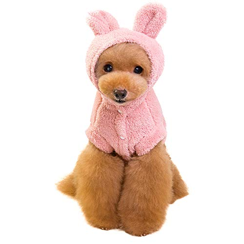 Pet Clothes, Pet Cat Puppy Hoodie Sweater Dog Coat Warm Sweatshirt Shirt Fashion Cartoon Bear Two-Legged Clothes -
