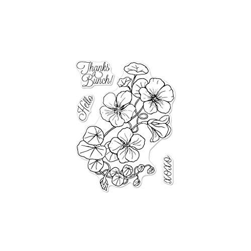 Hero Arts CM263 Clear Stamp Set, Hero Florals, Nasturtium, 3