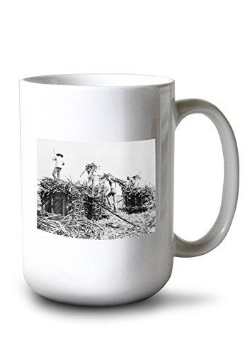 Lantern Press Sugar Cane Harvesting in Hawaii Photograph (15oz White Ceramic Mug) ()