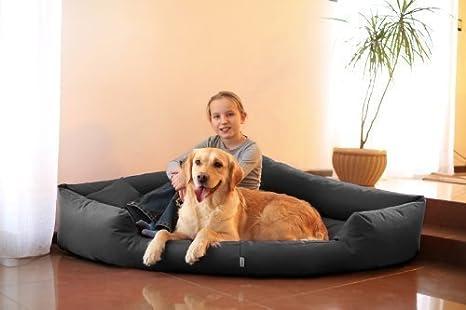 TR5 - 02 Juego de cama para perro Cama de esquina esquina cama para perro Sofá de Perro Cama para perro Talla XL 120 cm GRAFITO: Amazon.es: Productos para ...